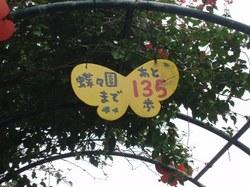 宮古32.JPG